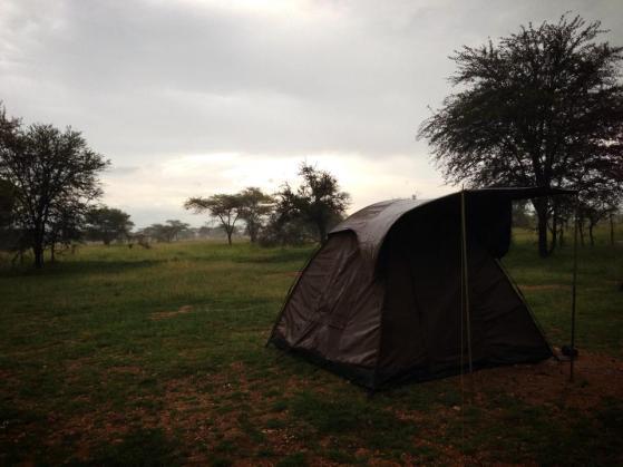 Camping in the Serengeti