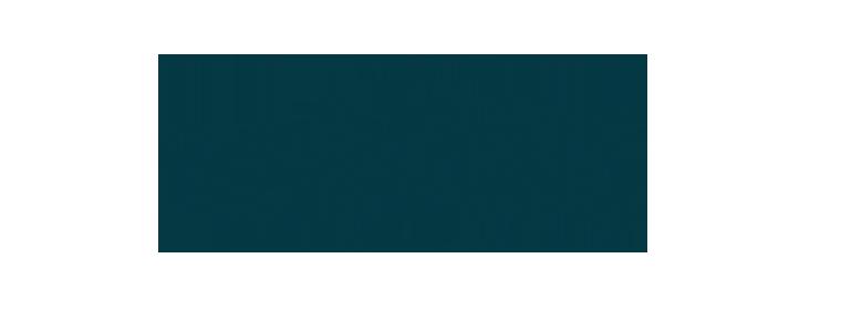 wildtale_logo