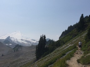 Mt. Baker in the distance.